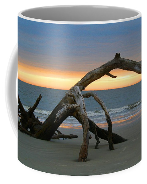 Water Coffee Mug featuring the photograph Driftwood Beach 1 by Kathryn Meyer
