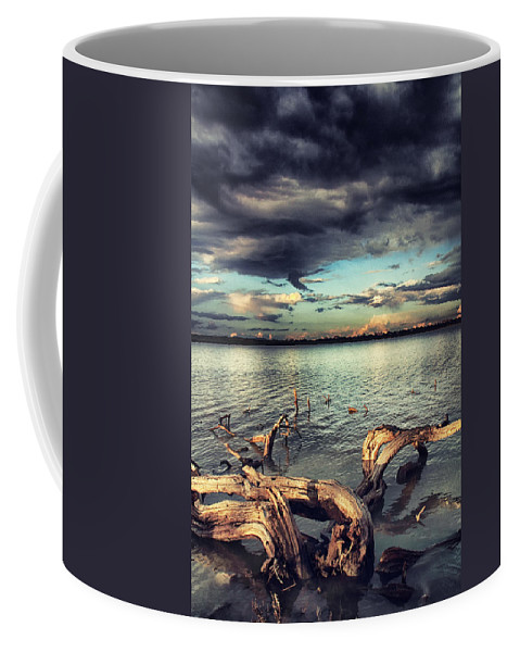 Driftwood Coffee Mug featuring the photograph Driftwood by Stelios Kleanthous