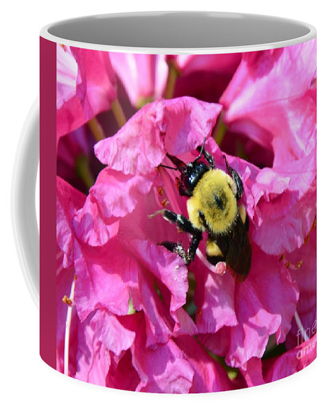 #bee Coffee Mug featuring the photograph Drinking Nectar by Kathleen Struckle