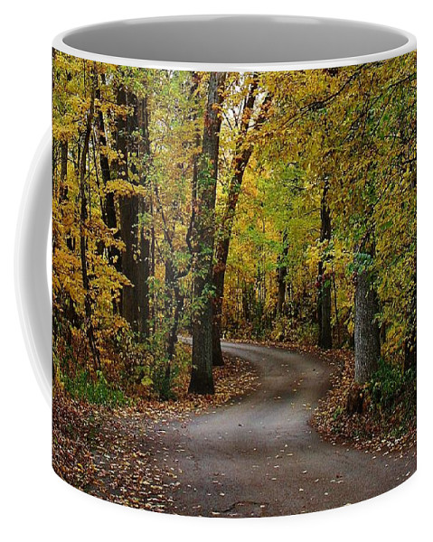 Woodland Coffee Mug featuring the photograph Drive Through The Woods by Bruce Bley