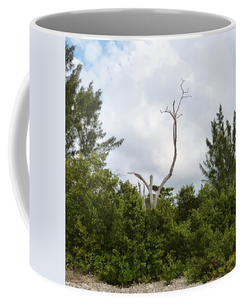 Color Coffee Mug featuring the photograph Druid Dance by Amar Sheow