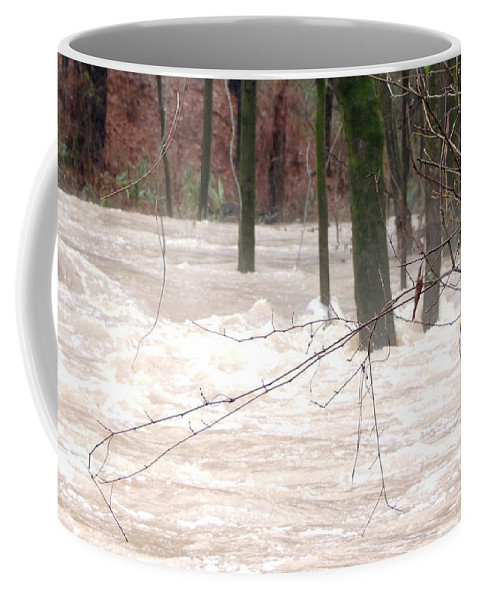Dry Creek Coffee Mug featuring the photograph Dry Creek-but Swift Waters by Kim Pate