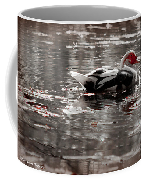 Bird Coffee Mug featuring the photograph Duck In Lake by Debra Forand