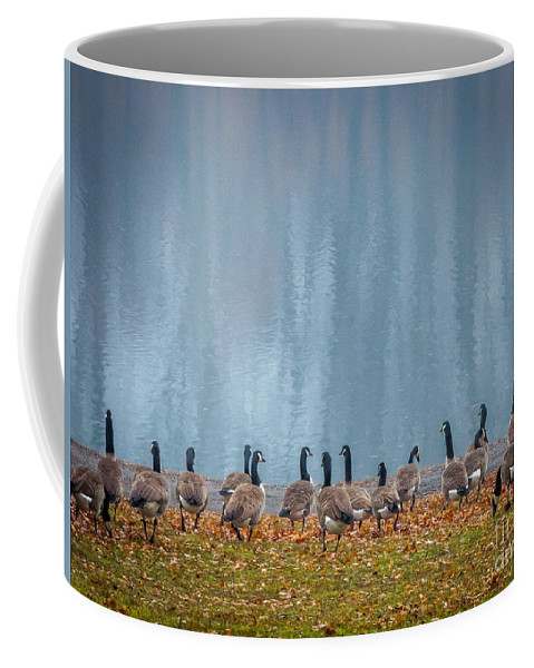 Providence Coffee Mug featuring the photograph Duck Reflections by DAC Photography