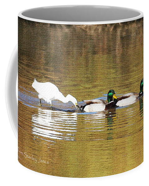 Ducks And Egret Coffee Mug featuring the photograph Ducks And Egret by Tom Janca