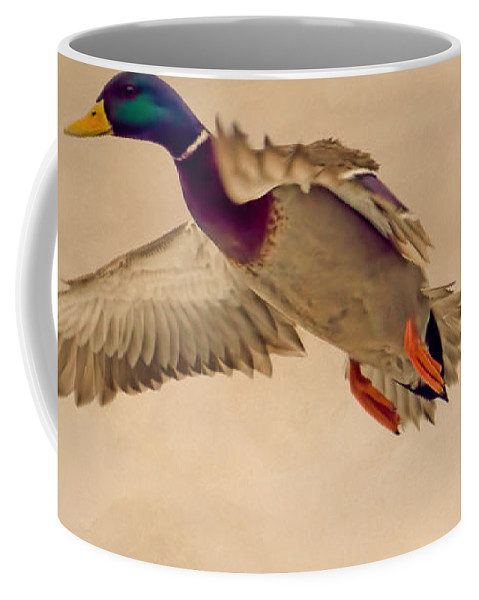 Duck Coffee Mug featuring the photograph Ducks In Flight by Bob Orsillo