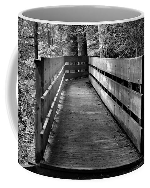 Dukes Creek Falls Coffee Mug featuring the photograph Dukes Creek Falls Walkway by Tara Potts