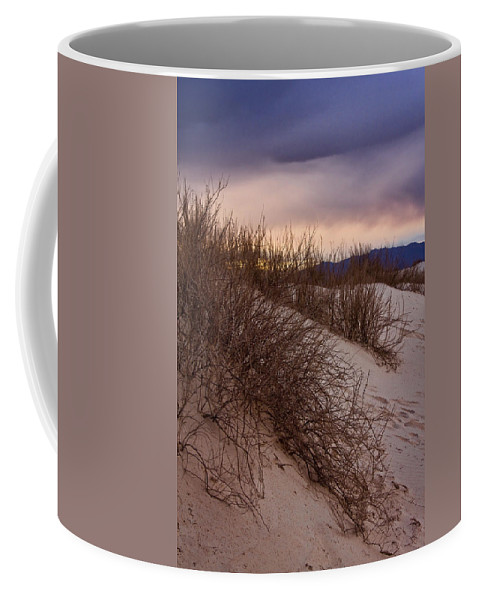 White Sands National Monument Coffee Mug featuring the photograph Dune Grass by Diana Powell