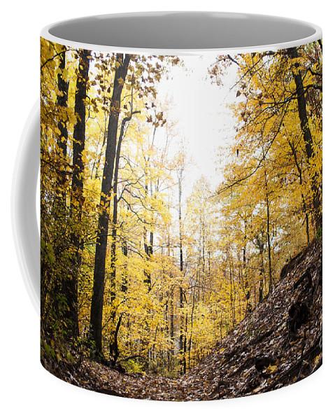 Dunes Coffee Mug featuring the photograph Dune Land Forest by Verana Stark