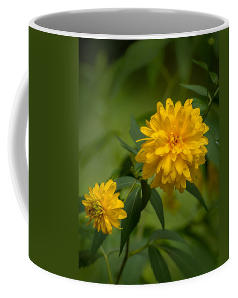 Flowers Coffee Mug featuring the photograph Duo by Robert Mitchell