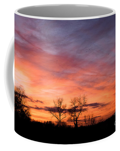Birds Sundown Coffee Mug featuring the photograph Dust Bunnies At Sundown by Brothers Beerens