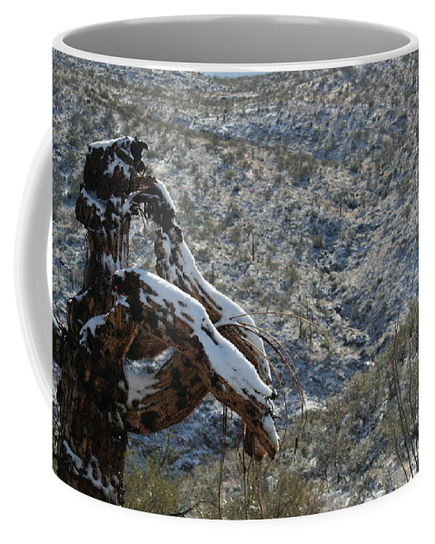 Snow Coffee Mug featuring the photograph Dusted by David S Reynolds