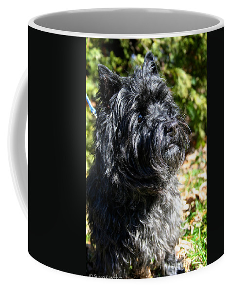 Dog Coffee Mug featuring the photograph Dusty by Susan Herber