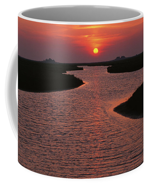 Beauty In Nature Coffee Mug featuring the photograph Dwelling Mounds In The Wadden Sea by Norbert Rosing