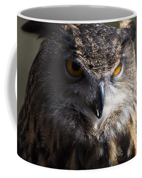 Eagle Owl Coffee Mug featuring the photograph Eagle Owl 2 by Chris Flees
