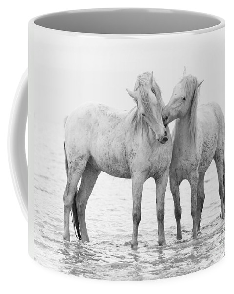 Black And White Coffee Mug featuring the photograph Early Morning Horse Play by Carol Walker