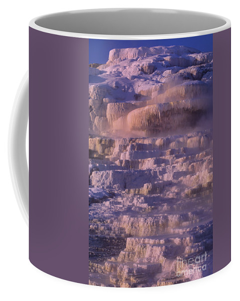North America Coffee Mug featuring the photograph Early Morning Light On Minerva Springs Yellowstone National Park by Dave Welling