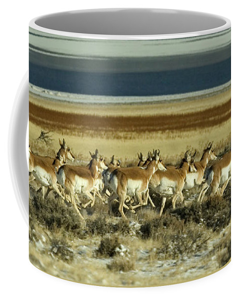 Antilocapra Americana Coffee Mug featuring the photograph Early Morning Run-signed by J L Woody Wooden