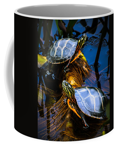 Reptile Coffee Mug featuring the photograph Eastern Painted Turtles by Bob Orsillo