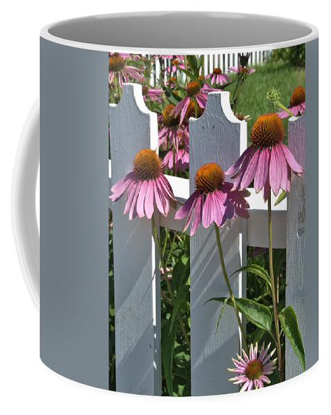 Echinacea Coffee Mug featuring the photograph Echinacea And A White Picket Fence by Valerie Kirkwood
