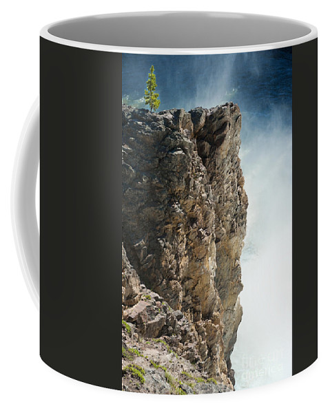 Yellowstone Coffee Mug featuring the photograph Edge Of The Upper Falls by Sandra Bronstein