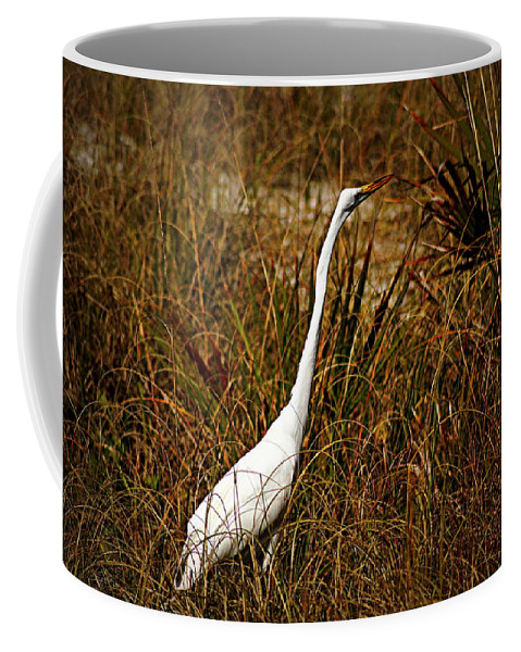 Egret Coffee Mug featuring the photograph Egret by Paul Wilford