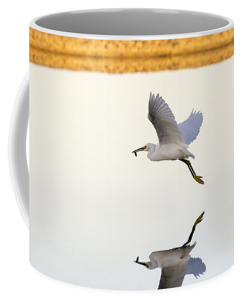Snowy Egret Coffee Mug featuring the photograph Egret With Fish- Reflected by Bruce Frye