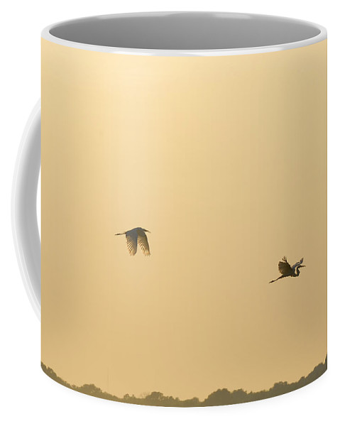 Egret Coffee Mug featuring the photograph Egrets In Flight by Charles Beeler