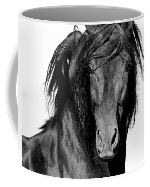 Spanish Horse Coffee Mug featuring the photograph El Caballo Negro by Carol Walker
