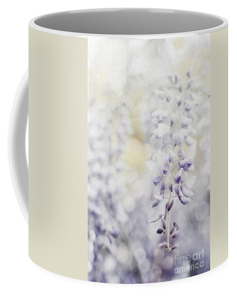 Asian Coffee Mug featuring the photograph Elegant Wisteria by Darren Fisher