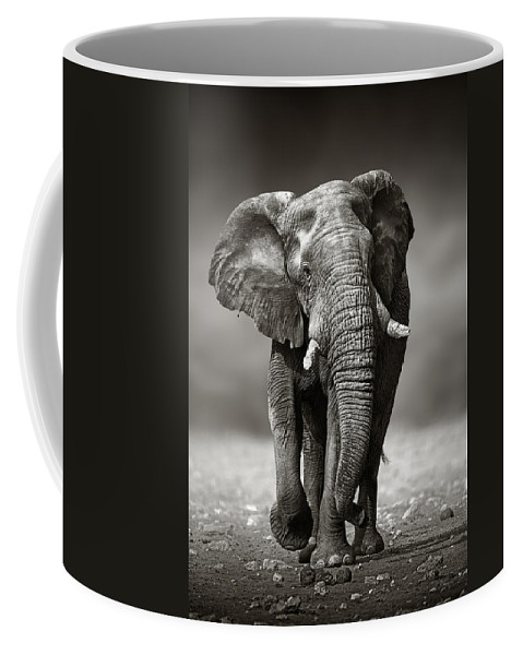Elephant Coffee Mug featuring the photograph Elephant approach from the front by Johan Swanepoel