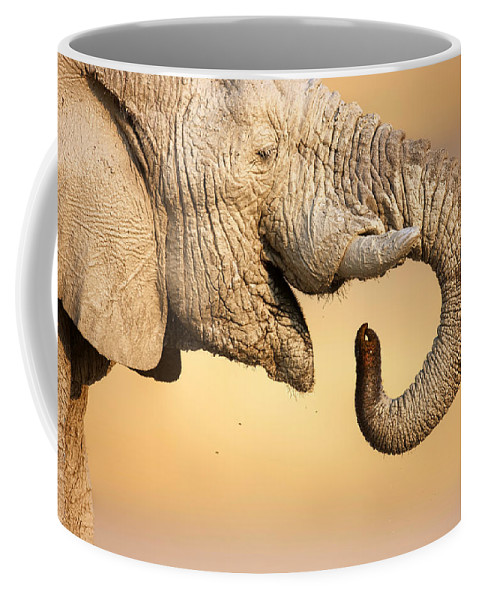 Elephant; Drink; Water; Close-up; Trunk; Profile; Mud; Muddy; Portrait; Wild; Animal; Wildlife; Mammal; African; Safari Animal; Loxodanta; Africana; Mouth; Curled; Full; Up; Closeup; Close; Up; One; Nobody; Side; View; Large; Head Coffee Mug featuring the photograph Elephant drinking by Johan Swanepoel