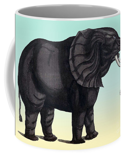 Science Coffee Mug featuring the photograph Elephant From The Historiae Animalium 16th Century by NLM Science Source