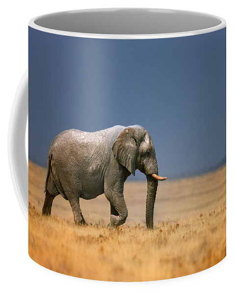 Walk Coffee Mug featuring the photograph Elephant in grassfield by Johan Swanepoel