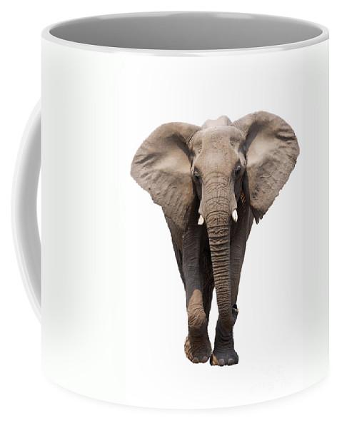 Wild Coffee Mug featuring the photograph Elephant Isolated by Johan Swanepoel