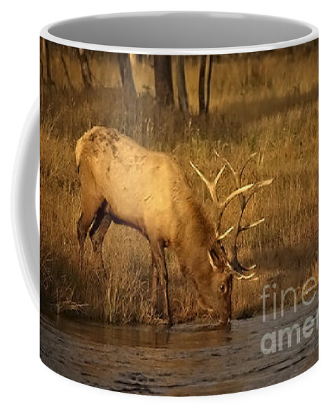 Elk Coffee Mug featuring the photograph Elk-animals-image-1 by Wildlife Fine Art