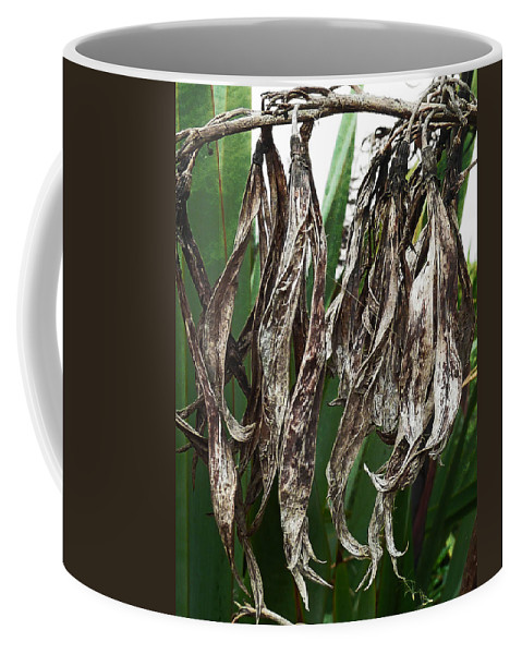 Empty Coffee Mug featuring the photograph Empty Shells by Steve Taylor