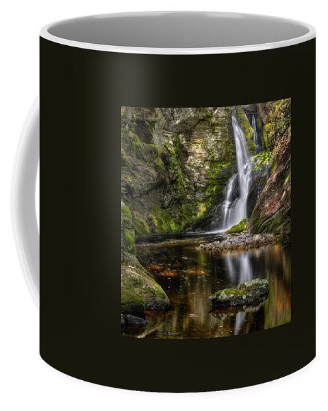 Waterfalls Coffee Mug featuring the photograph Enders Falls by Bill Wakeley