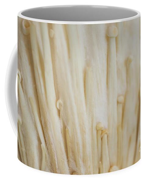 Enoki Mushroom Coffee Mug featuring the photograph Enoki Mushroom by Iris Richardson