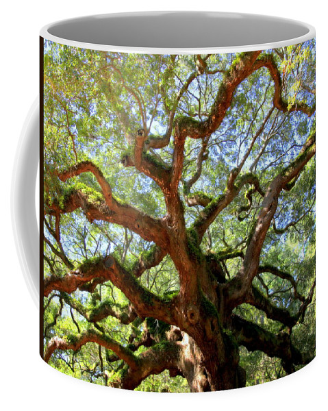 Charleston Coffee Mug featuring the photograph Entangled Beauty by Karen Wiles