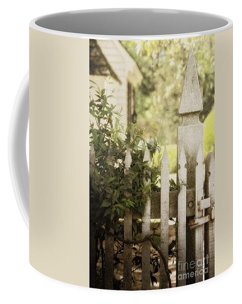 Fence Coffee Mug featuring the photograph Entwined by Margie Hurwich