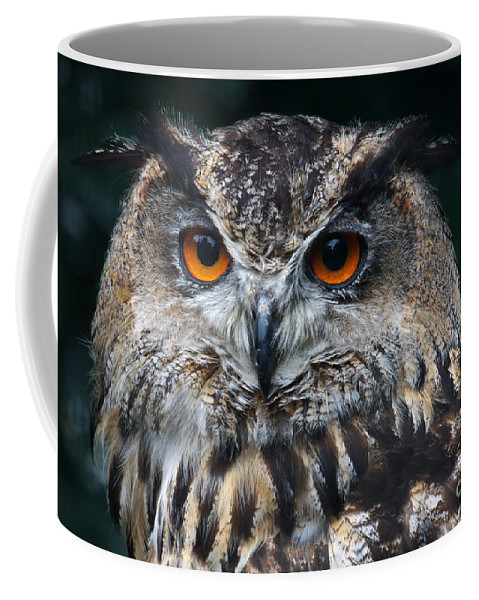 Eagle Owl Coffee Mug featuring the photograph European Eagle Owl by Nick Biemans