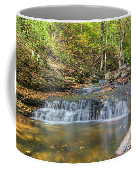 Ricketts Glen State Park Coffee Mug featuring the photograph Even Flow by Rick Kuperberg Sr