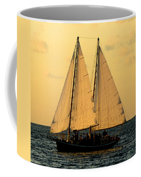 Water Coffee Mug featuring the photograph More Sails In Key West by Bob Slitzan