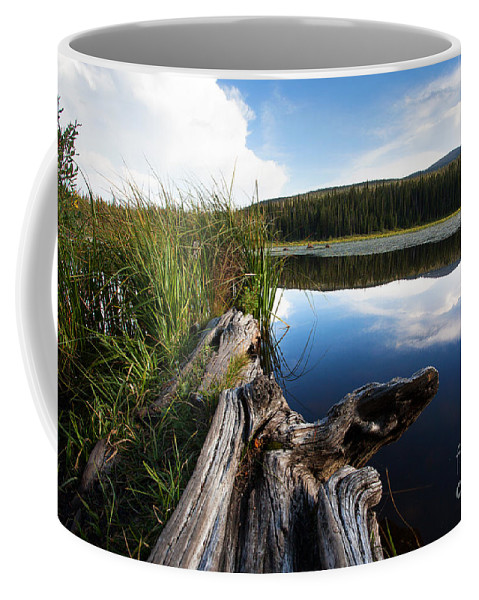 Red Rock Lake Photograph Coffee Mug featuring the photograph Evening At Red Rock Lake by Jim Garrison