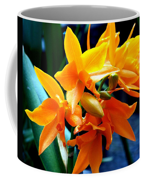 Flowers Coffee Mug featuring the photograph Exotic Orange by Karen Wiles