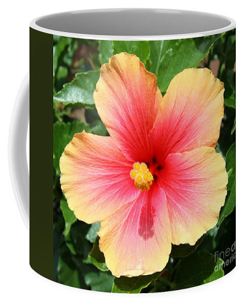 Hibiscus Coffee Mug featuring the photograph Exotic Pride by Christiane Schulze Art And Photography