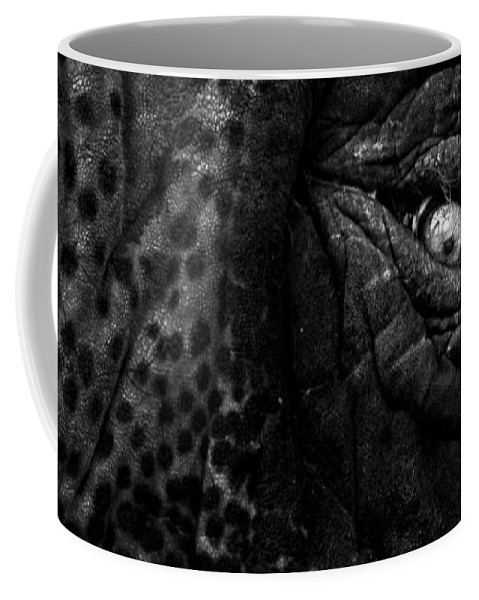Elephant Coffee Mug featuring the photograph Eye Of The Elephant by Bob Orsillo