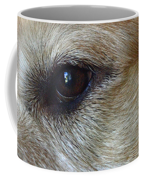 Eye See You Coffee Mug featuring the photograph Eye See You by Lisa Phillips
