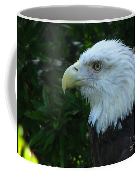 Eagle Coffee Mug featuring the photograph Eyecon by Greg Patzer